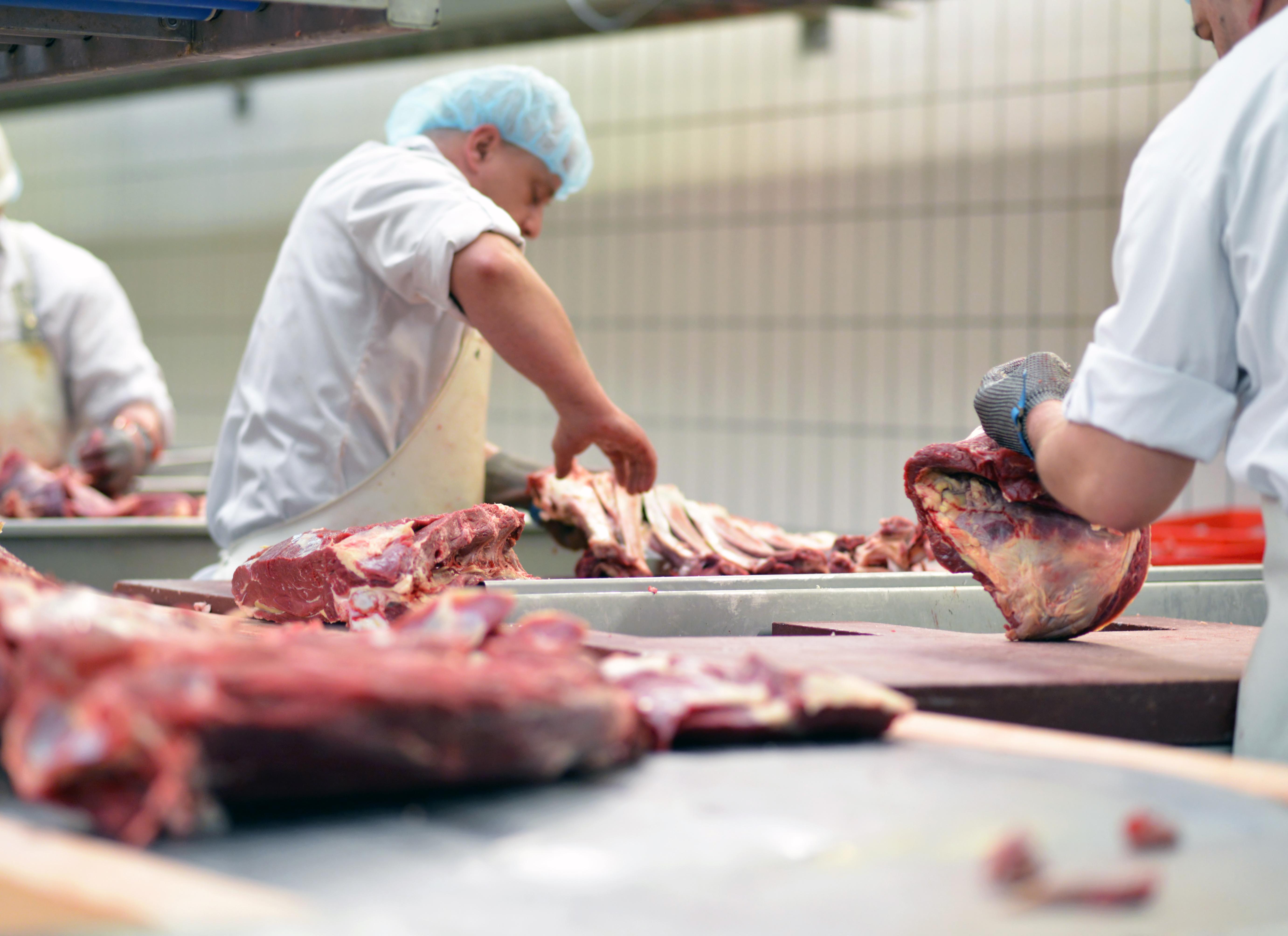 Faktencheck: Werkverträge und Leiharbeit in der Fleischindustrie